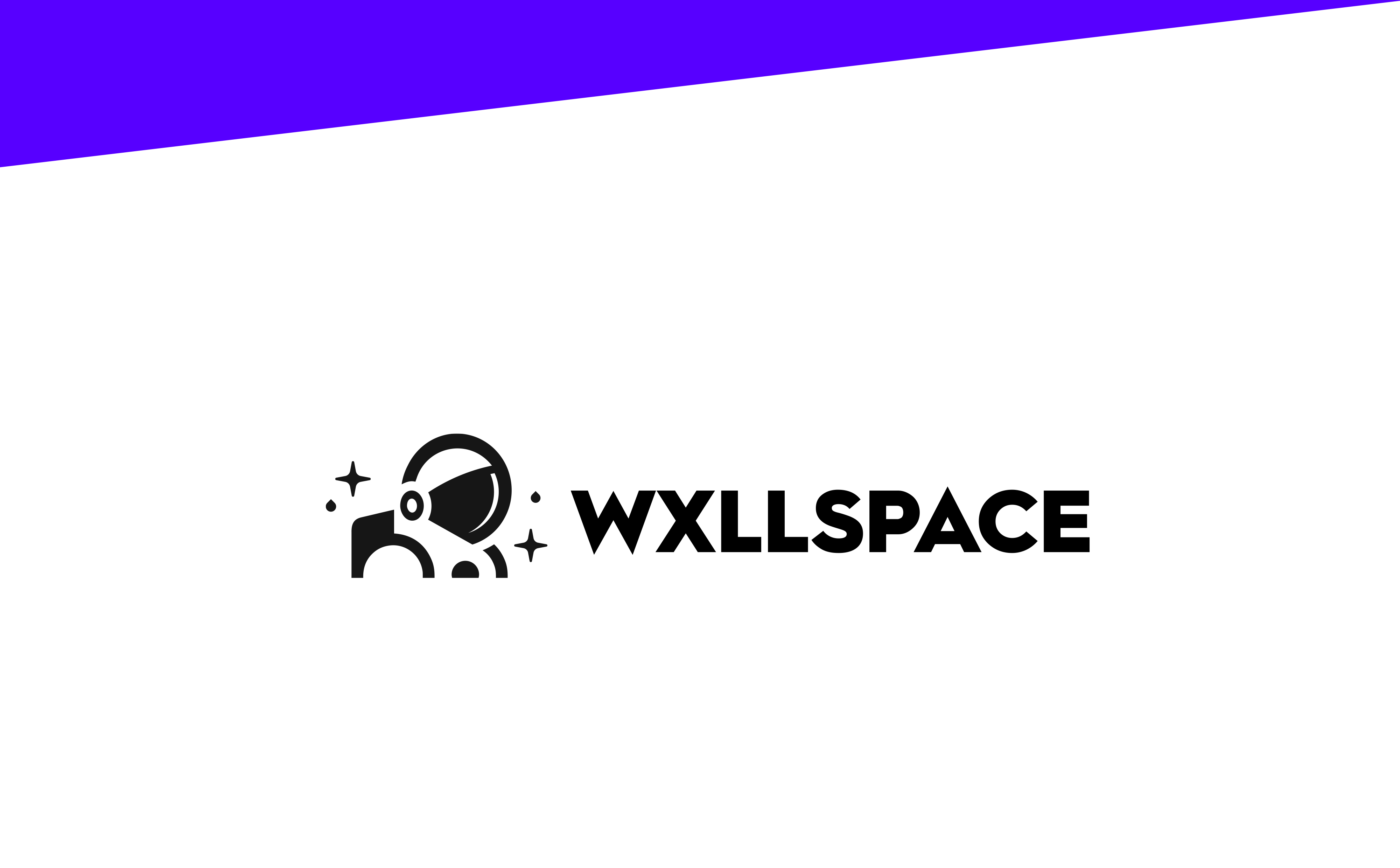 Wxllspace logo alternative